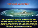 The Great Barrier Reef. The Great Barrier Reef is the largest coral reef in the world and the only living thing on our planet that can be seen from space! There are more than 1,500 kinds of fish and 400 types of coral in the Great Barrier Reef. No place on land has a greater variety of sea life!