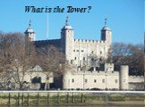 What is the Tower?