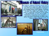 """The American Museum of Natural History has a scientific staff of more than 200, and sponsors over 100 special field expeditions each year. The Museum boasts habitat groups of African, Asian and North American mammals, the """"Star of India"""", the largest blue sapphire in the world, an interest"""