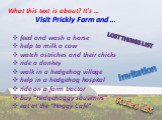 "Visit Prickly Farm and … feed and wash a horse help to milk a cow watch ostriches and their chicks ride a donkey walk in a hedgehog village help in a hedgehog hospital ride on a farm tractor buy ""Hedgehoggy souvenirs"" eat at the ""Hoggy Café"". Rules list Invitation Lost things list. What this text is"