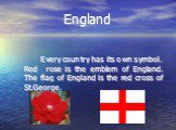England. Every country has its own symbol. Red rose is the emblem of England. The flag of England is the red cross of St.George.