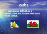Wales. Wales has a daffodil, as a symbol.There are many of them in the Wales valleys.