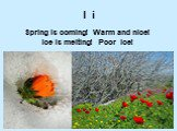 I i. Spring is coming! Warm and nice! Ice is melting! Poor ice!