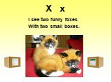 X x. I see two funny foxes With two small boxes.