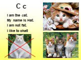 C c. I am the cat. My name is Hat. I am not fat. I like to chat!