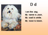 D d. I am the dog. My name is Jack. My coat is white. My nose is black.
