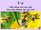 E e. Little yellow bee, bee, bee! How many flowers can you see?