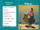 Walrus. wears / is wearing has got a white cotton shirt with a bow; a brown waist; an old blue jacket grey trousers no socks black shoes