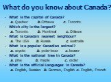 What is the capital of Canada? a. Quebec b. Ottawa c. Toronto Which city is the largest? a. Toronto b. Montreal c. Ottawa What is Canada's nearest neighbour? a. The USA b. Russia c. Australia What is a popular Canadian animal? a. coyote b. polar bear c. beaver What is the national tree in Canada? a.