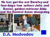 D.A. Medvedev. He has got the cat Dorofey and four dogs: two setters Jolie and Daniel, golden retriever Aldu and the Central Asian sheep-dog
