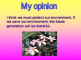 I think we must protect our environment. If we save our environment, the future generation will be thankful. My opinion
