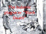 "The bubonic plague or ""Black Death"""