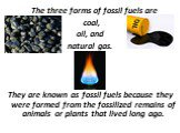 The three forms of fossil fuels are coal, oil, and natural gas. They are known as fossil fuels because they were formed from the fossilized remains of animals or plants that lived long ago.