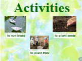 Activities to plant seeds to plant trees to run boats