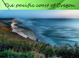 The pacific coast of Oregon