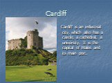 Cardiff. Cardiff is an industrial city, which also has a castle, a cathedral, a university. It is the capital of Wales and its main port.