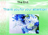 The End. Thank you for your attention!