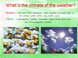 What is the climate of the weather? Weather - is the state of the atmosphere in this location at a certain time or for a limited period of time (day, month, year). Climate - is the long-term patterns of weather, typical for the given area due to its geographical position.