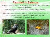 Rainfall in Belarus. On the territory of Belarus at an average annual rainfall is 600 to 700 mm of precipitation. 70% of precipitation in the form of rain falls in April-October. The number of snow days in Belarus, from 75 in the south-west up to 125 in the north-east. Maximum height of snow cover,