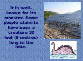 It is well-known for its monster. Some people claim to have seen a creature 30 feet (9 metres) long in the lake.