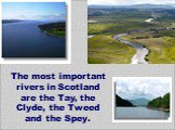 The most important rivers in Scotland are the Tay, the Clyde, the Tweed and the Spey.
