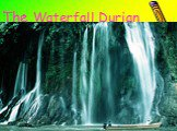 The Waterfall Durian