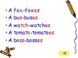 A fox-foxes A bus-buses A watch-watches A tomato-tomatoes A boss-bosses