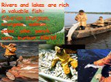 Rivers and lakes are rich in valuable fish: Siberian sturgeon, sturgeon, salmon, peled, pike, perch, carp, burbot, sterlet