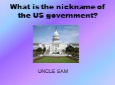 What is the nickname of the US government? UNCLE SAM