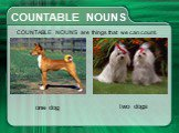 СOUNTABLE NOUNS. СOUNTABLE NOUNS are things that we can count. one dog two dogs