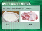 "UNCOUNTABLE NOUNS We cannot ""count"" flour meat"