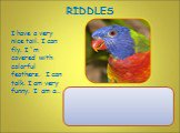 I have a very nice tail. I can fly. I `m covered with colorful feathers. I can talk. I am very funny. I am a..