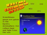 WHAT ARE GREENHOUSE GASES? Greenhouse gases are gases in the Earth's atmosphere that collect heat and light from the sun. СO2 CH4 NO2 CFC
