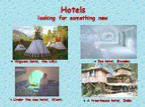 Hotels looking for something new ● A tree-house hotel, India ● Ice hotel, Sweden ● Under the sea hotel, Miami ● Wigwam hotel, the USA