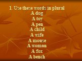 1. Use these words in plural A dog A toy A pen A child A wife A mouse A woman A fox A bench