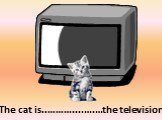 in front of. The cat is..………....….…the television