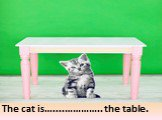 under. The cat is…....………….. the table.