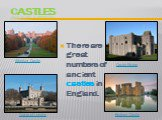 castles. There are great numbers of ancient castles in England. Windsor Castle Bodiam Castle Castle Rising Tower of London
