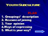 Youth Subculture. PLAN 1. Groupings' description 2. Reasons of joining 3. Your opinion 4.Ways of expressing 5. What is your way?