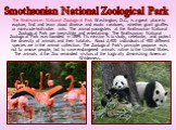 The Smithsonian National Zoological Park Washington, D.C., is a great place to explore, find and learn about diverse and exotic creatures, whether giant giraffes or miniscule leaf-cutter ants. The animal youngsters at the Smithsonian National Zoological Park are irresistible and entertaining. The Sm