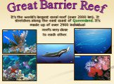 It's the world's largest coral reef (over 2000 km). It stretches along the east coast of Queensland. It's made up of over 2900 individual reefs very close to each other. Great Barrier Reef