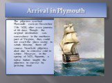 Arrival in Plymouth. The pilgrims reached Plymouth rock on December 11th 1620, after a sea journey of 66 days. Though the original destination was somewhere in the northern part of Virginia, they could not reach the place owing to winds blowing them off course. Nearly46 pilgrims died due to extreme