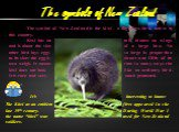 The symbols of New Zealand. The symbol of New Zealand is the kiwi – a flightless bird, native to this country. Kiwi has no tail, almost no wings and is about the size of a large hen. No other bird lays eggs so large in proportion to its size: the egg is about one fifth of its own weigh. It means tha