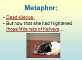 Metaphor: Dead silence. But now that she had frightened those little rats of Kelveys…