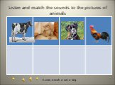 Listen and match the sounds to the pictures of animals. A cow, a cock, a cat, a dog