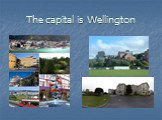 The capital is Wellington