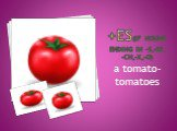 +ES(if nouns ending in –s,-ss, -ch,-x,-o). a tomato-tomatoes