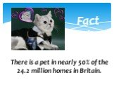 Fact File. There is a pet in nearly 50% of the 24.2 million homes in Britain.