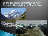 There are many mountains in New Zealand. The highest is Mount Cook