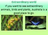 Extraordinary world If you want to see extraordinary animals, birds and plants, Australia is a good place to go.